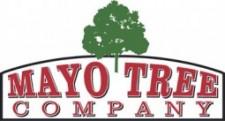 MAYO TREE LOGO